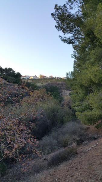 Limekiln Canyon