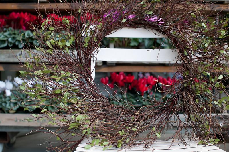 Flowerland-Nov2014-7-3435