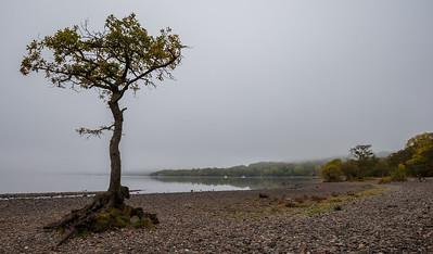 Loch Lomond & Flanders Moss