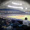 Ray's Baseball dscn2673