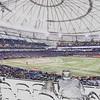 Ray's Baseball dscn2670