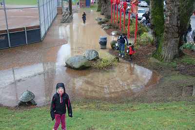 Now that's a puddle!