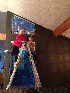 Painting the fireplace room and dining room. Meet my helpers.