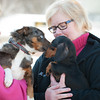 140313 Enterprise JOED VIERA/STAFF PHOTOGRAPHER-Lockport, NY- Linda van Harssel holds Blu Blu a Aussie blue healer mix and Margie Kwiatkowski holds Jezzy a Dachshound for the Heart of Niagara animal rescue on Thursday, Mar. 13th, 2014.