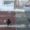 140313 Enterprise JOED VIERA/STAFF PHOTOGRAPHER-Lockport, NY- A man rides his  bicycle across the Exchange St Bridge on Thursday, Mar. 13th, 2014.