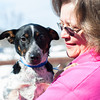 140313 Enterprise JOED VIERA/STAFF PHOTOGRAPHER-Lockport, NY- Kathy Nowakowski holds Ringo a blue healer Jack Russell mix for the Heart of Niagara animal rescue organization on Thursday, Mar. 13th, 2014.