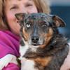 140313 Enterprise JOED VIERA/STAFF PHOTOGRAPHER-Lockport, NY- Linda van Harssel holds Blu Blu a Aussie blue healer mix for the Heart of Niagara animal rescue organization on Thursday, Mar. 13th, 2014.
