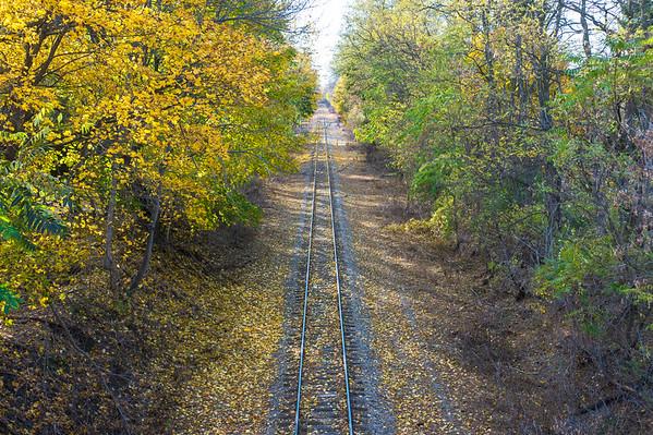JOED VIERA/STAFF PHOTOGRAPHER-Lockport, NY-Leaves fall along the train tracks. Tuesday, November, 11 2014.