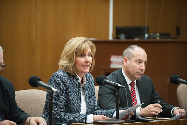 JOED VIERA/STAFF PHOTOGRAPHER-Lockport, NY-Lockport Mayor Anne McCaffrey speaks at the common council meeting. Wednesday, October, 8, 2014.