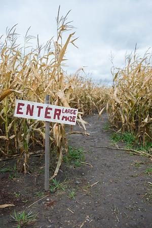 JOED VIERA/STAFF PHOTOGRAPHER-Lockport, NY-The entrance to a tricky corn maze. Saturday, October, 18 2014.