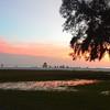 Florida 2014   DSC_5639