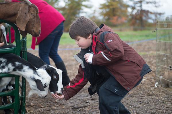 JOED VIERA/STAFF PHOTOGRAPHER-Lockport, NY-Trevor Schley feeds a goat. Saturday, October, 18 2014.