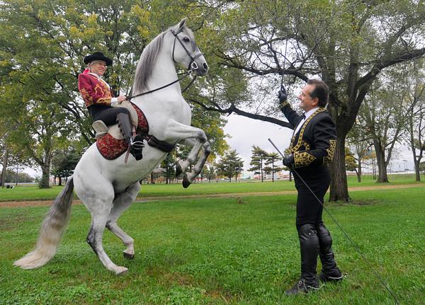MET1015 horses levade