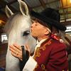 MET1015 horses drentwett