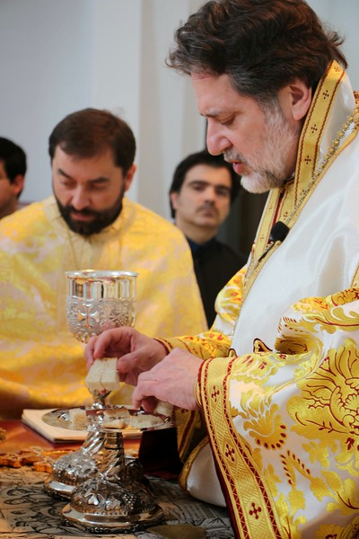 Ordination Radulescu (140).jpg