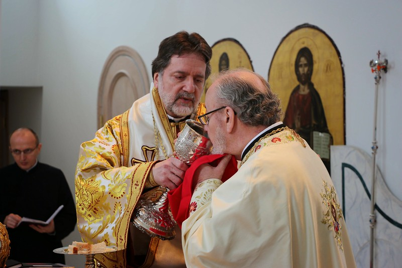Ordination Radulescu (151).jpg