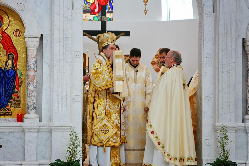 Ordination Radulescu (133).jpg