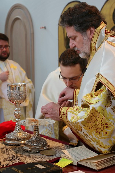 Ordination Radulescu (147).jpg