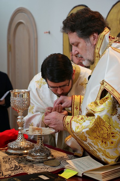 Ordination Radulescu (148).JPG