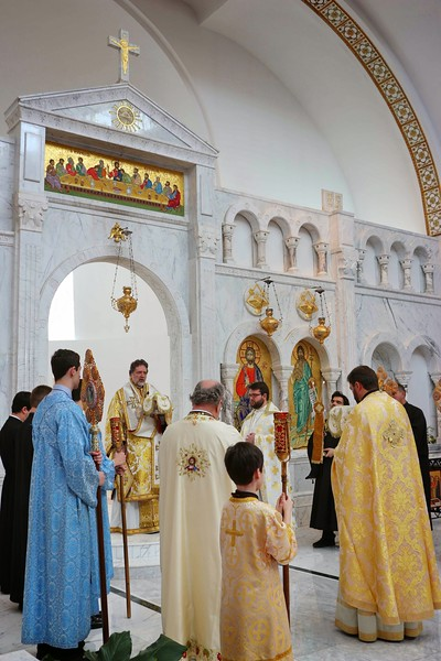 Ordination Radulescu (73).jpg