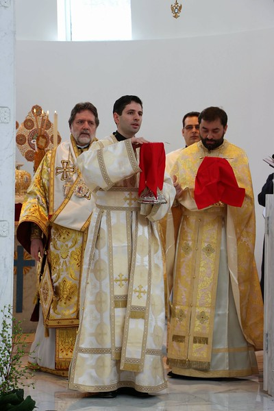 Ordination Radulescu (160).jpg
