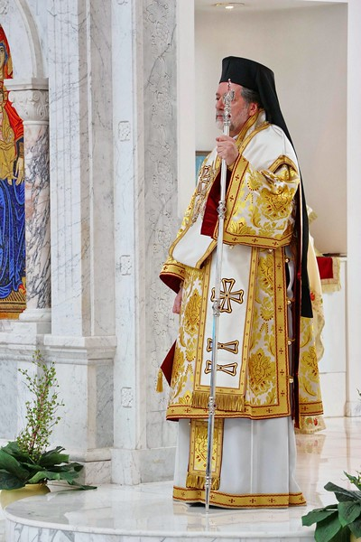 Ordination Radulescu (36).jpg