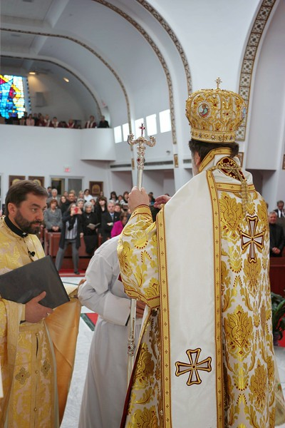 Ordination Radulescu (92).jpg