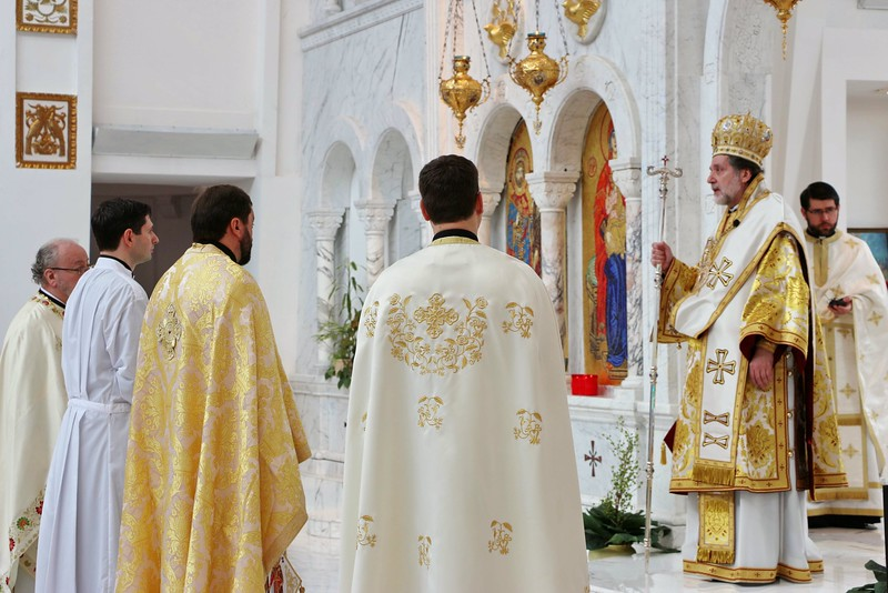 Ordination Radulescu (105).jpg