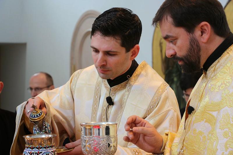 Ordination Radulescu (156).jpg