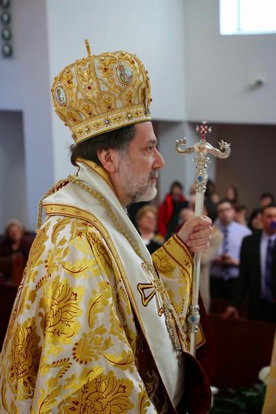 Ordination Radulescu (98).jpg