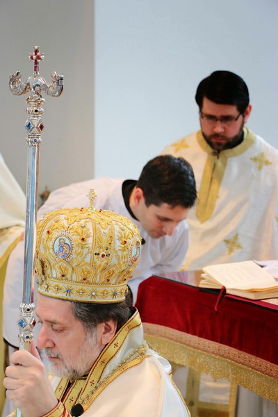 Ordination Radulescu (114).jpg
