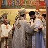 Ordination Fr. Timothy Cook (64).jpg
