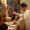 Ordination Fr. Timothy Cook (68).jpg
