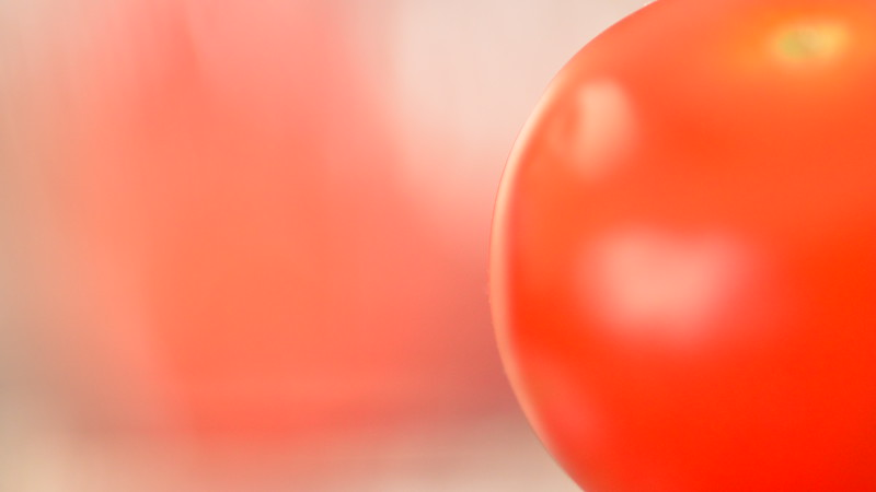 Cherry Tomato - Perfect Manual Focus at Edge