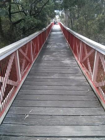 20141230 Yarra River Loop run