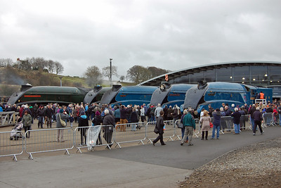 For the record, here are the other five 'A4' locomotives assembled outside the museum's main building (23/02/2014)