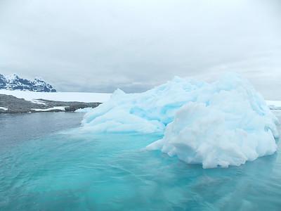 Penn Alumni Travel: Antarctica 2014