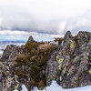 Rocks and Foliage on Top Back Mount Perisher