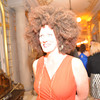 Phillips Gala afterparty at the Anderson House.  Photo by Ben Droz