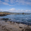 Low tide at Pigeon Point