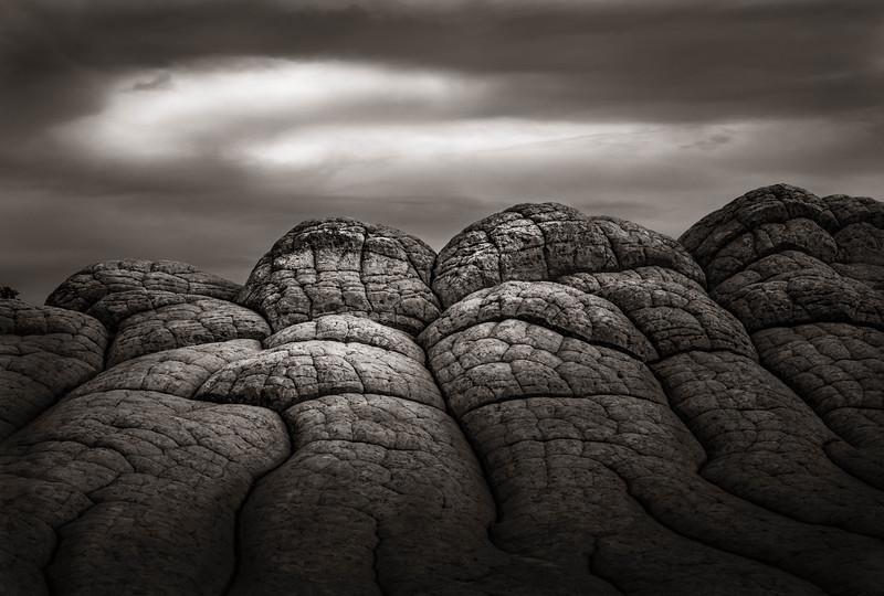 Fallen Embrace - Vermilion Cliffs, Arizona