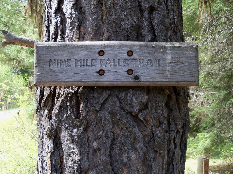 Nine Mile Falls Trail
