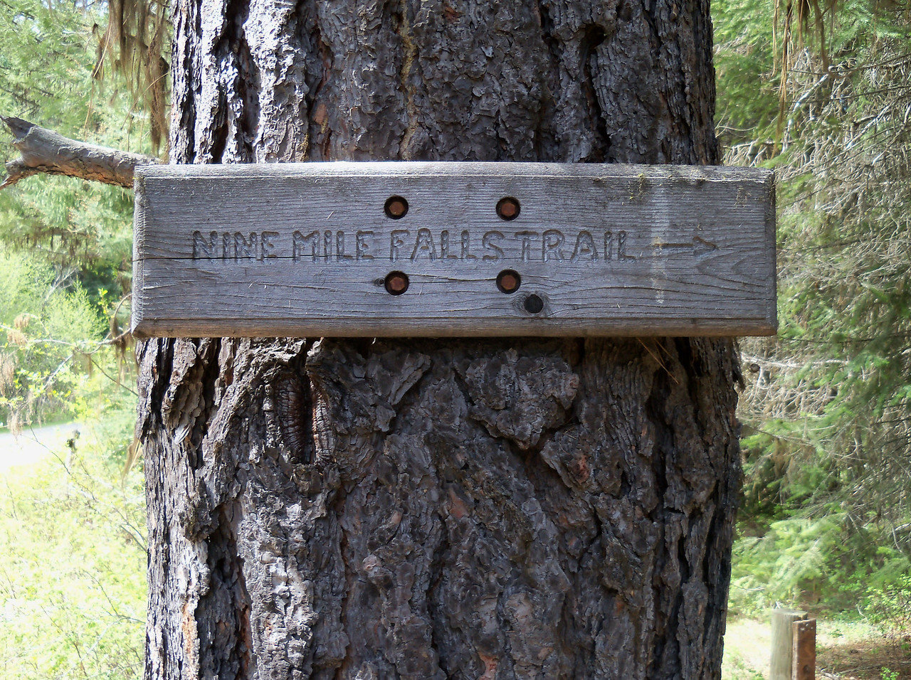 Nine Mile Falls Trail