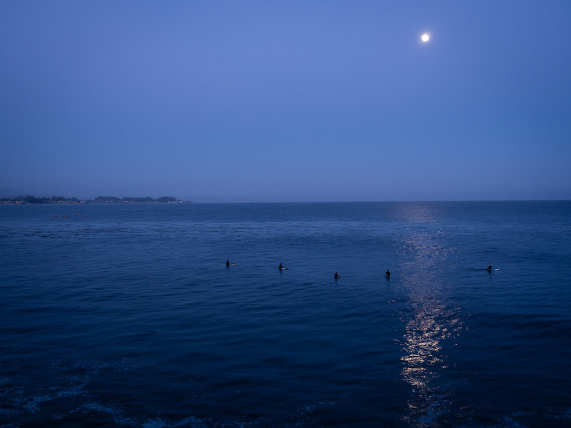 Surfing by moonlight