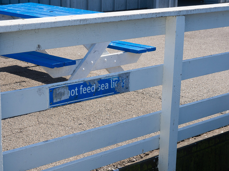 Do not feed sea lions