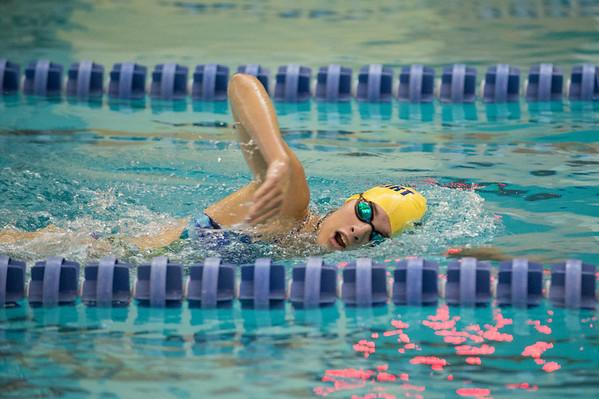 JOED VIERA/STAFF PHOTOGRAPHER-Lockport, NY-Lockport High School swimmer Savanah Pencillepractices on Friday, August, 22nd.