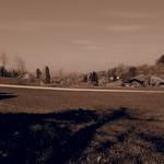 Albishorn (909 M) 13.4.2014