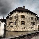 Schloss Hallwyl  27.2.2014