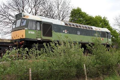 Class 25 D7523 (25173) in the sidings.