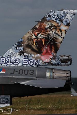 Tiger Meet 2014 : Schleswig Jagel : 23rd & 24th June